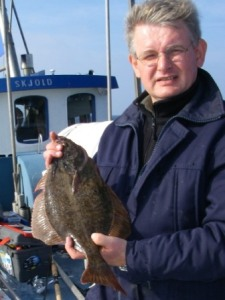 fladfisk-september-2008-013